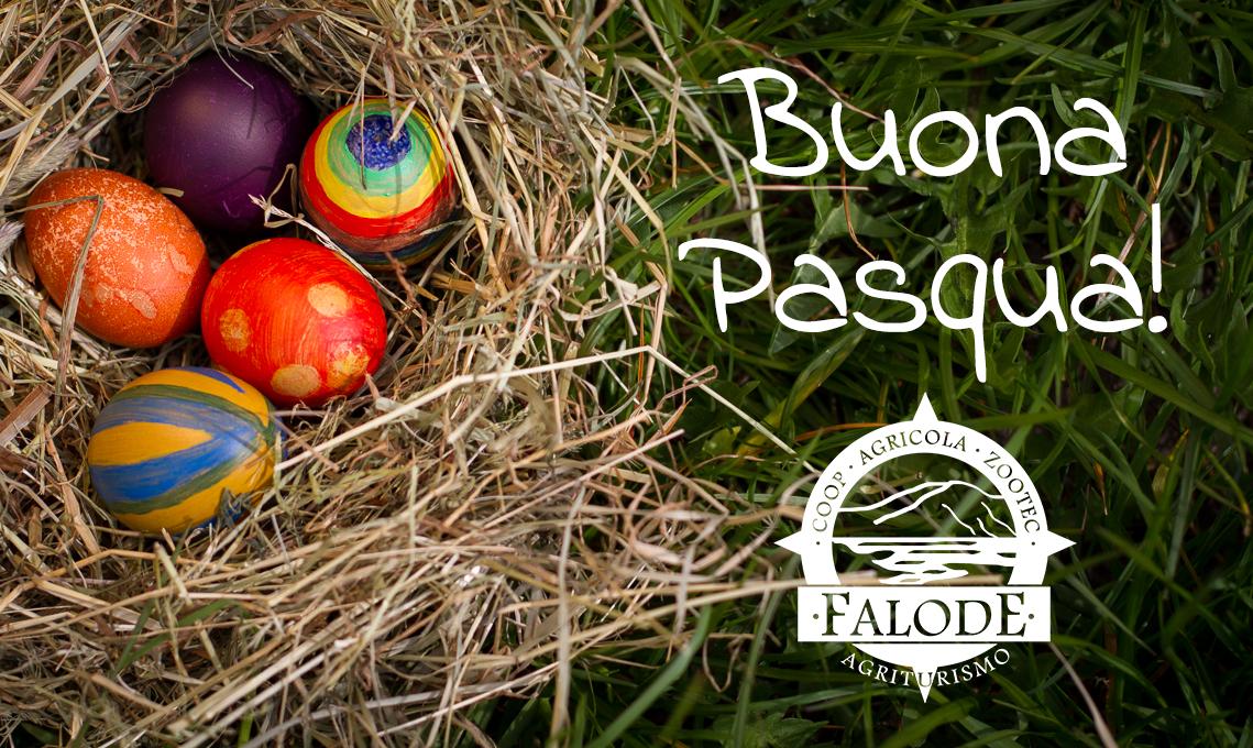 Buona Pasqua dalla Falode!